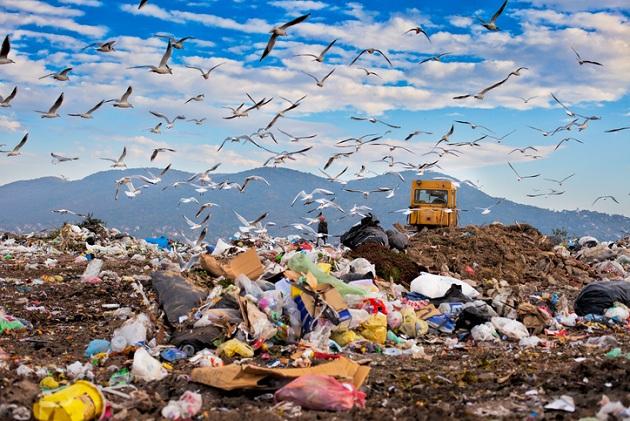 zero waste home pdf مترجم